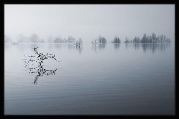 See im Nebel (2)