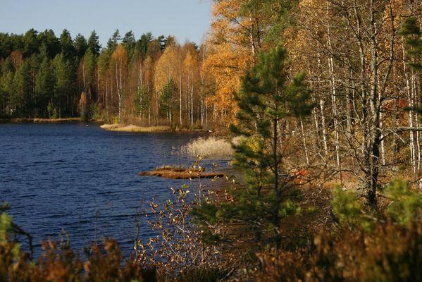 See in Sør-Odal