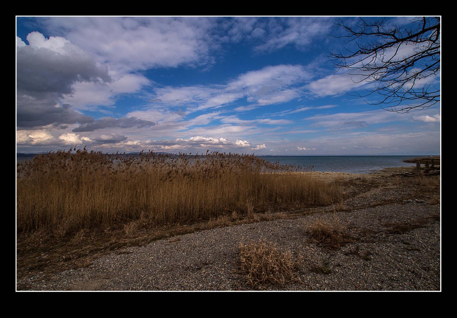 See - Landschaft II