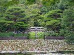See mit Brücke in der Parkanlage Kinkaku-ji bei Kyoto