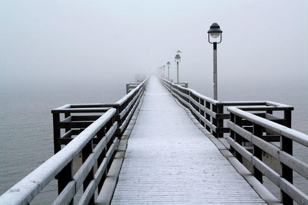 Seebrücke Lubmin im Nebel
