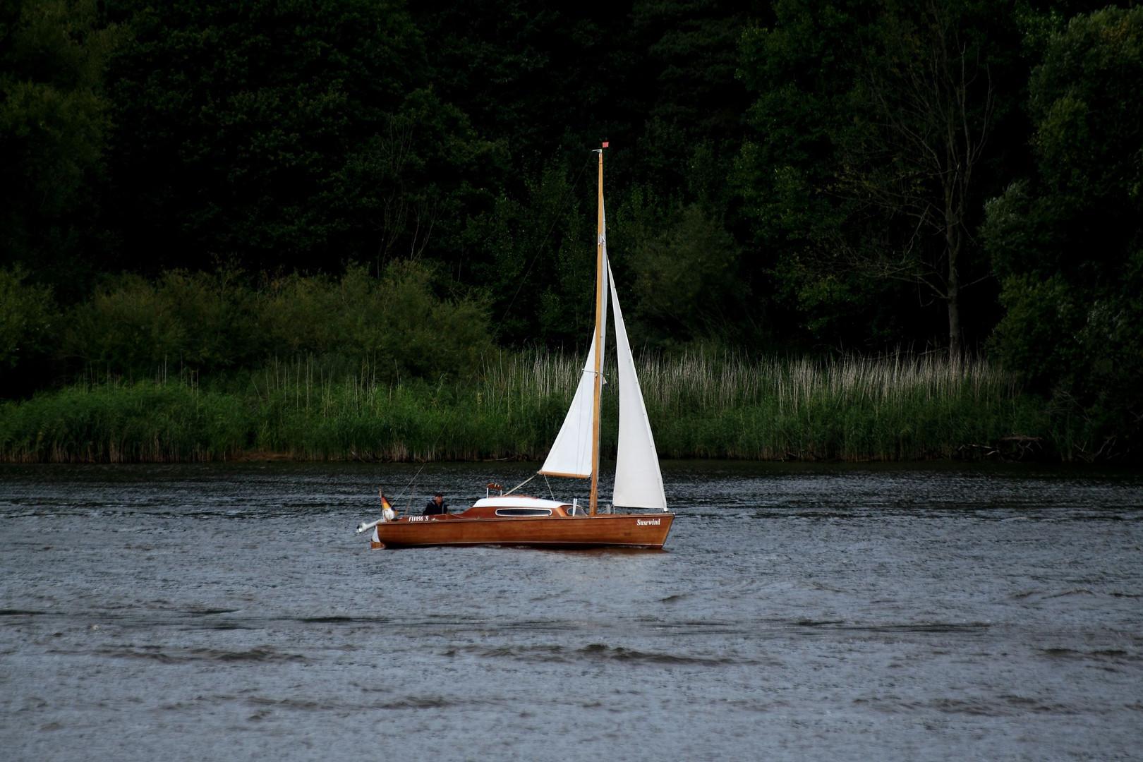 Seegler auf der Elbe