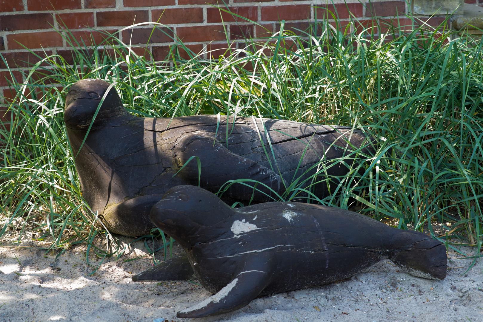 Seehunde vor einem Sielhafenmuseum