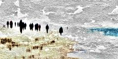 Seelenwanderung  # 7453-3703