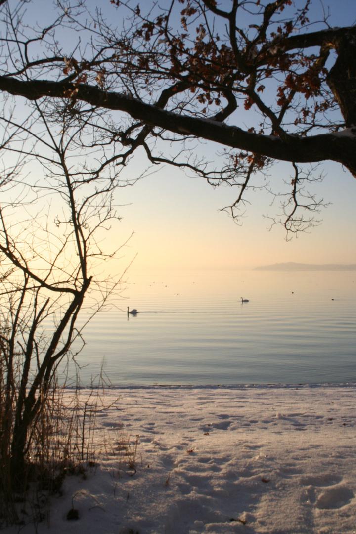 Seenlandschaft im Winter