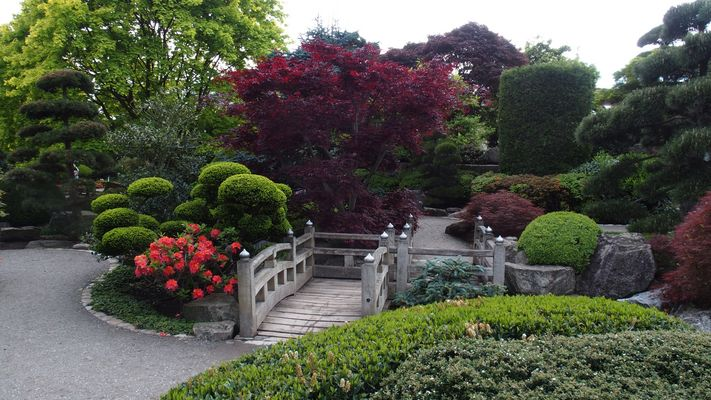 Seepark,Freiburg,Japanischer Garten