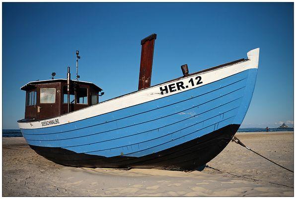 Seeschwalbe HER.12