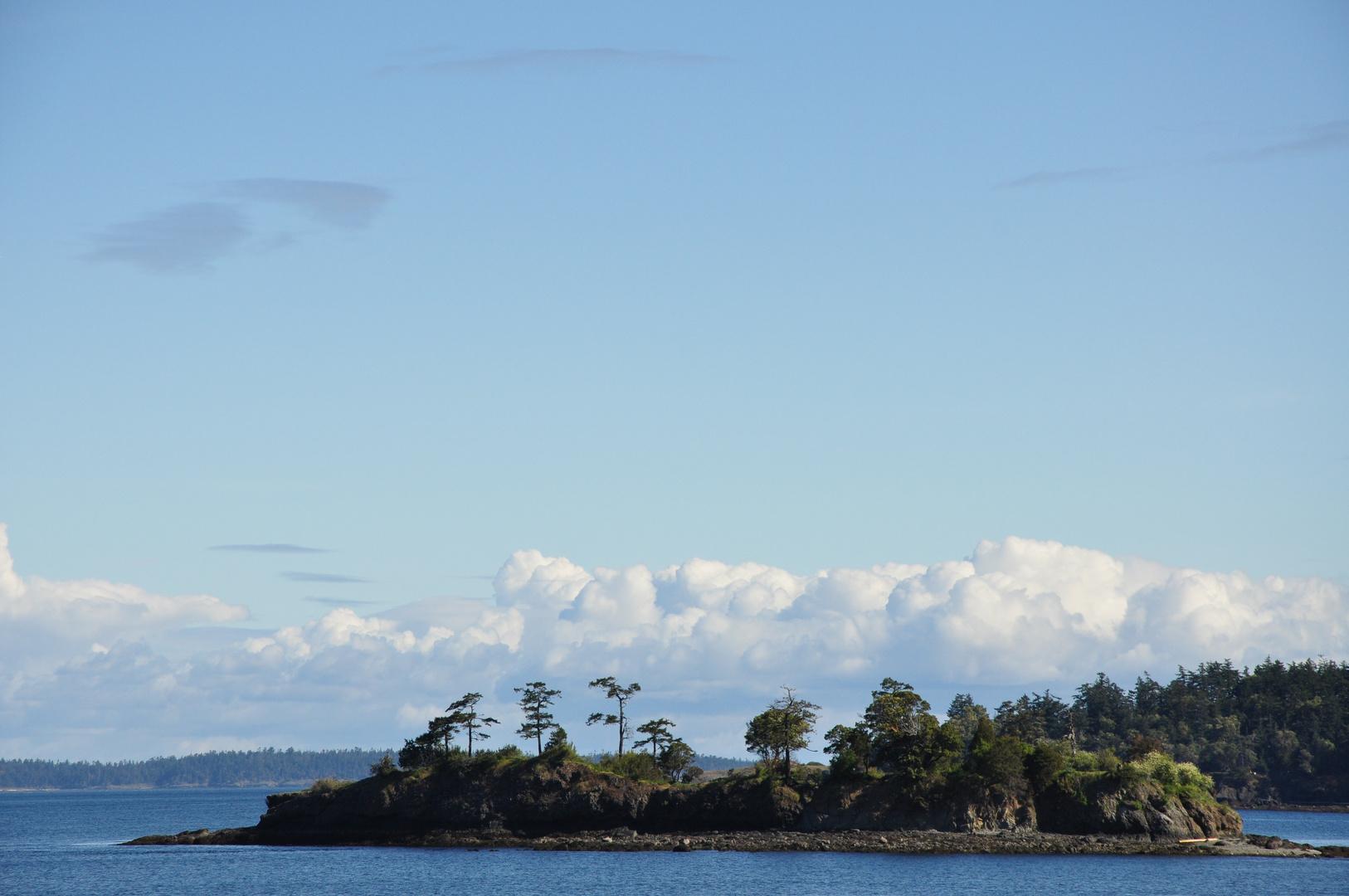 Seestern Insel an der West Küste.