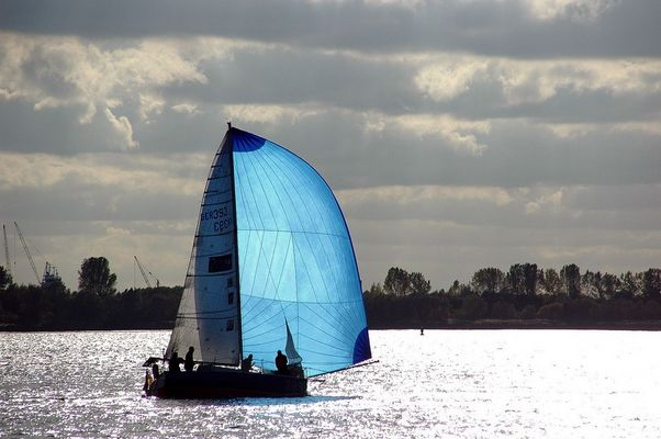 Segel-Impression auf der Elbe