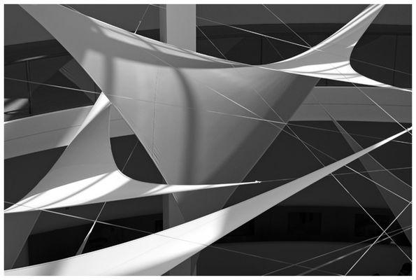 Segel in Pinakothek 01