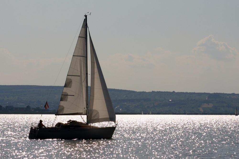 Segelboot am Neusiedlersee