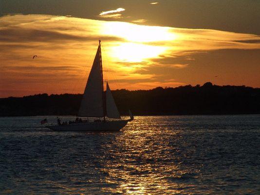 Segelboot in Newport