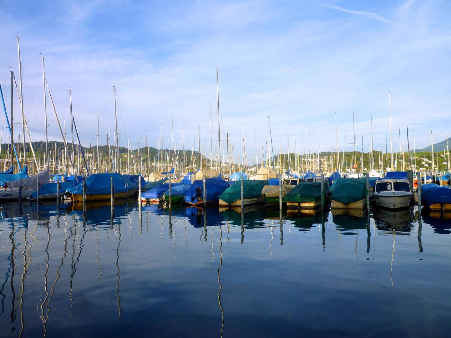 Segelbootshafen Tribschen in Luzern ...