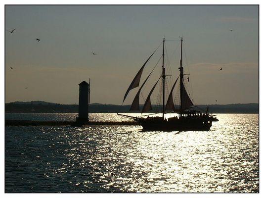 Segelschiff in der Abendsonne