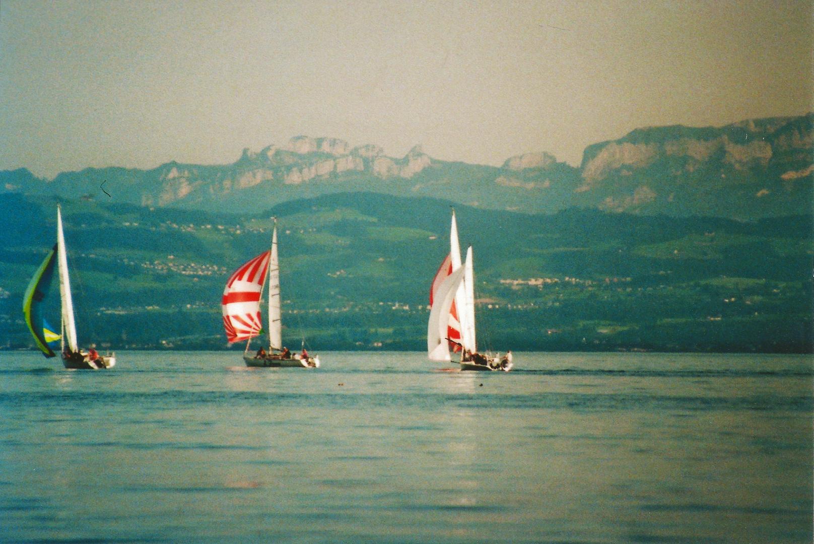 Segelschiffe vor Alpenpanorama
