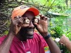 Segeltörn Karibik- Furchterregend-aber harmlos. Blüten des Cannonball Trees