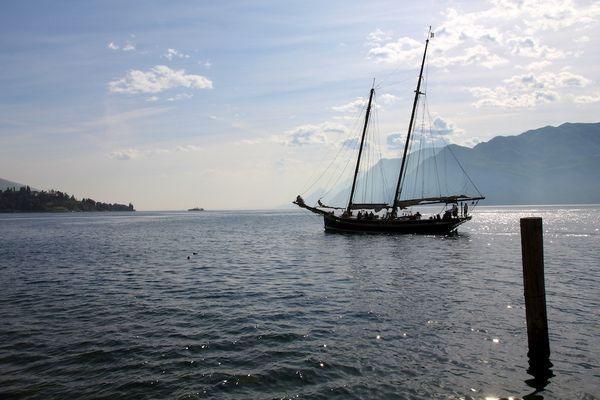 Segler auf dem Gardasee
