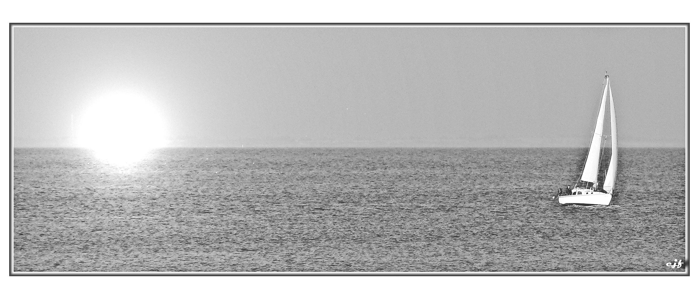 Segler im Wattenmeer