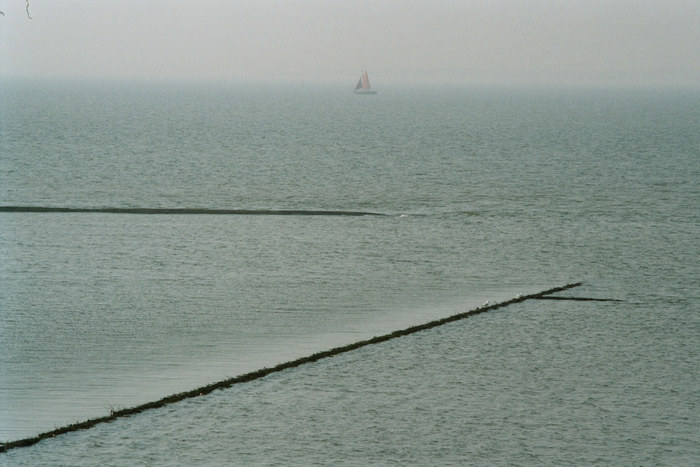 Segler im Wattenmeer.
