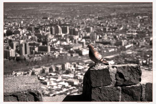Sehnsucht in der einsamen Stadt