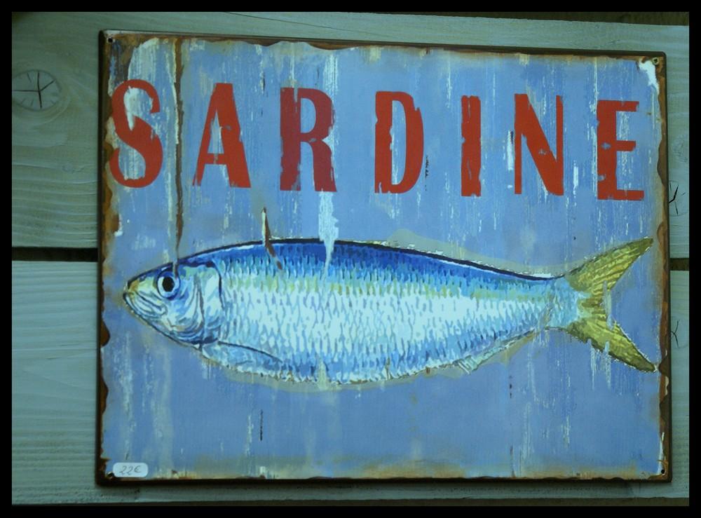sehr delikates sardinenschild