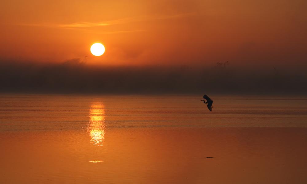Sehr früh Morgens an der Lagune.