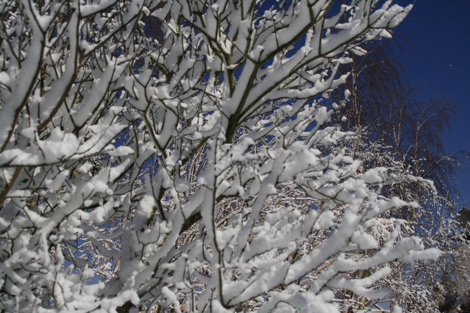 Sehr viel Schnee
