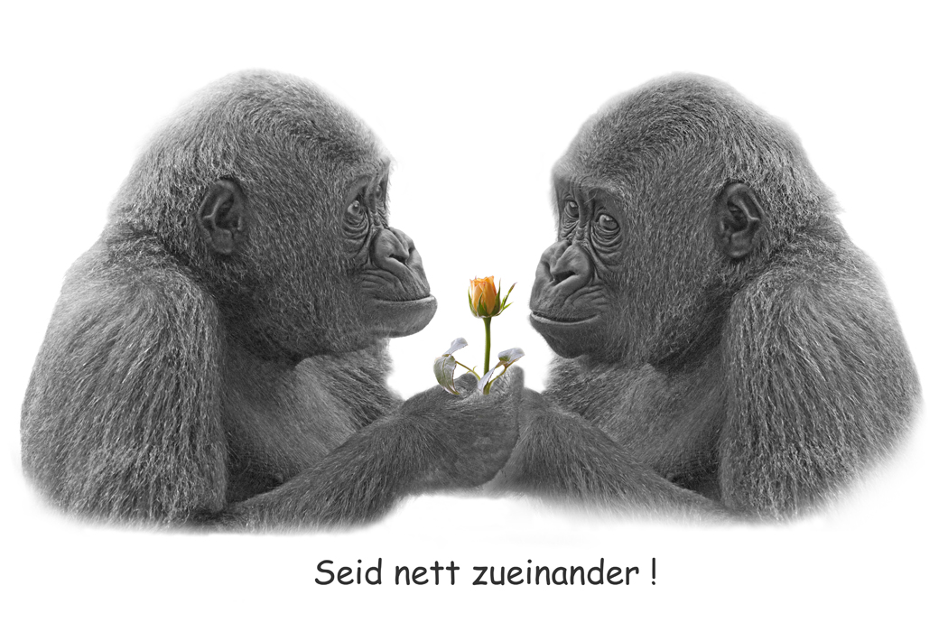 Seid nett zueinander