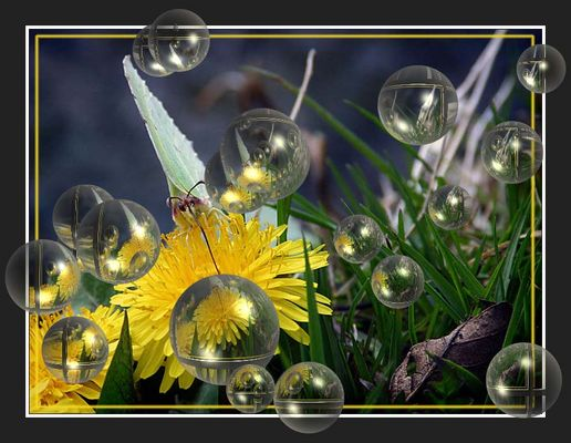 Seifen-Blasen-Schmetterling