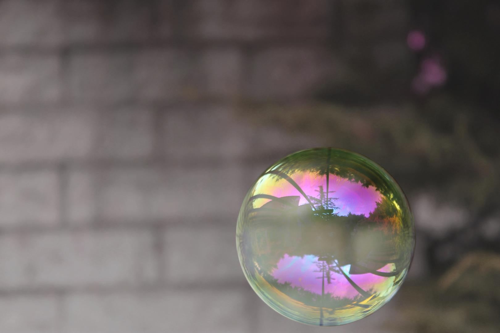 Seifenblasen - Spiegelung