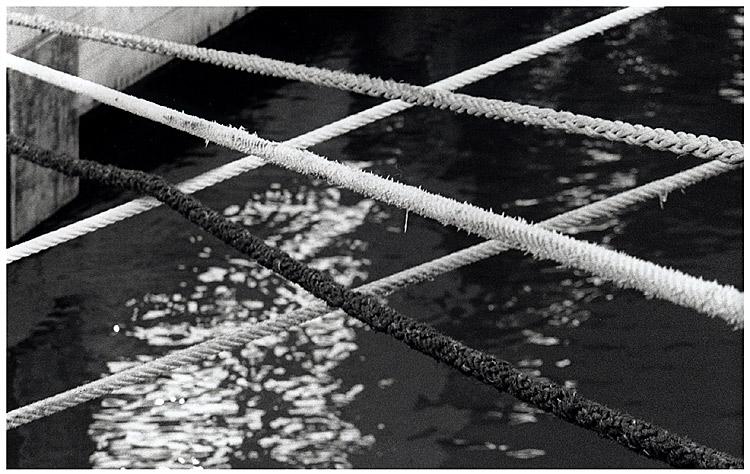 Seil-Netz