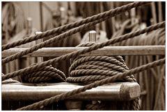 """Seile auf der """"Sail"""""""