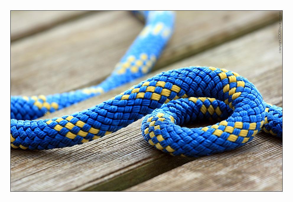 Seilschlange