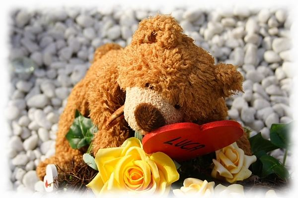 Sein letzter Teddybär...