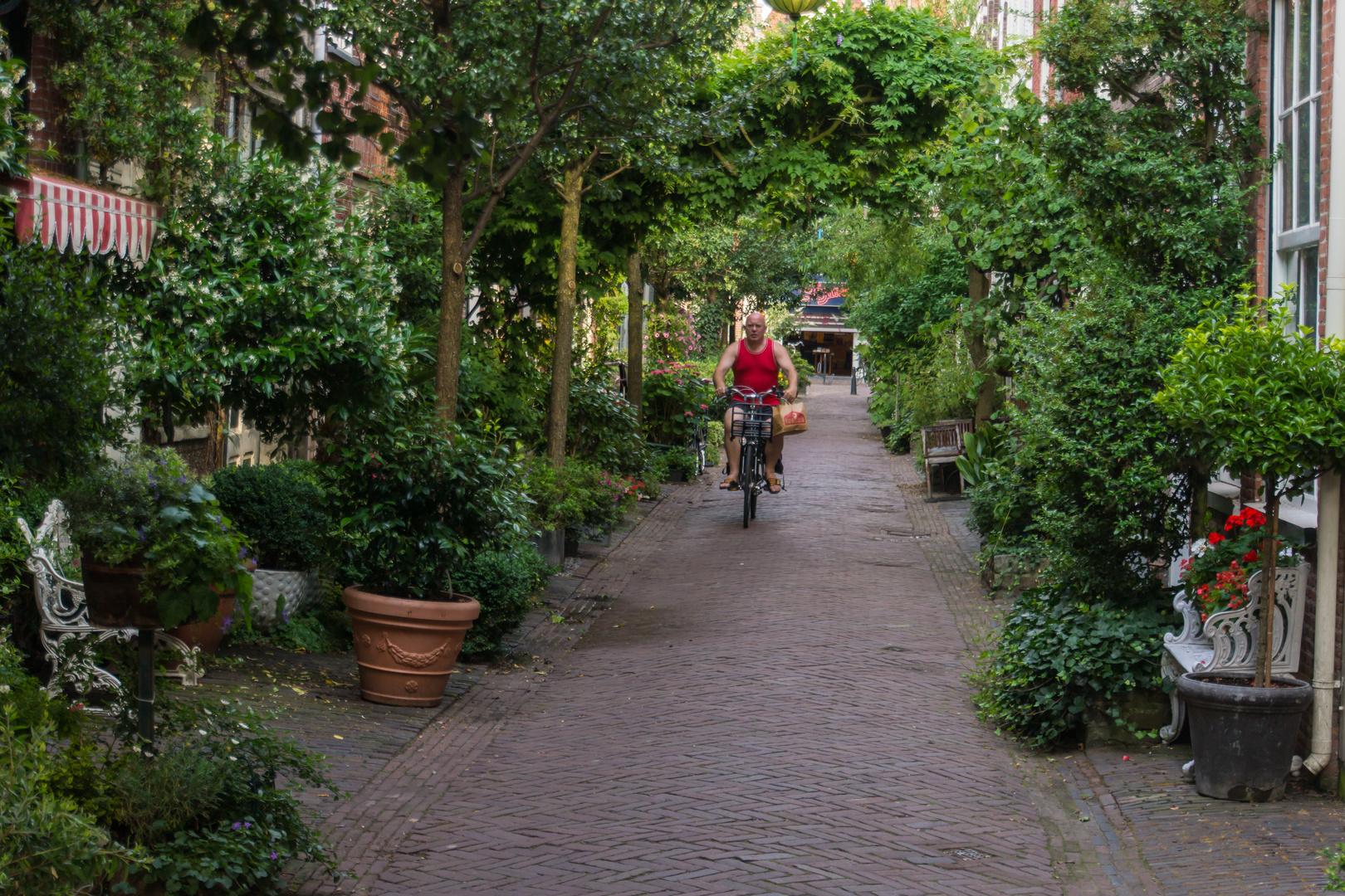 Seitengasse - Haarlem/Niederlande