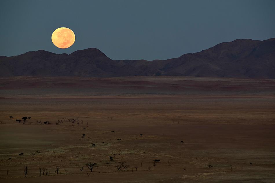 Selektion Namibia 2014 – 4