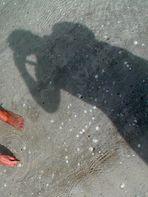 Self mit Hand und Fuß