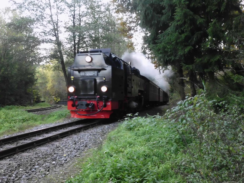 Selketalbahn kurz vor Silberhütte