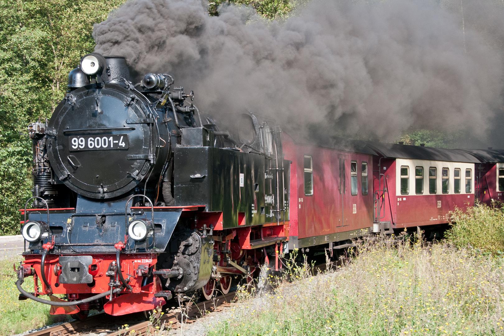 Selketalbahn006