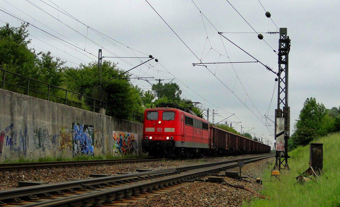 """""""Seltener Gast"""", München-Trudering, 11.06.2011"""