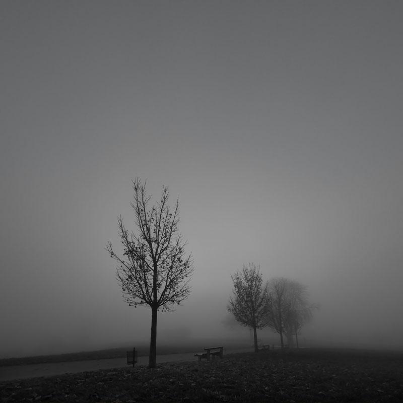 Seltsam im Nebel  ...