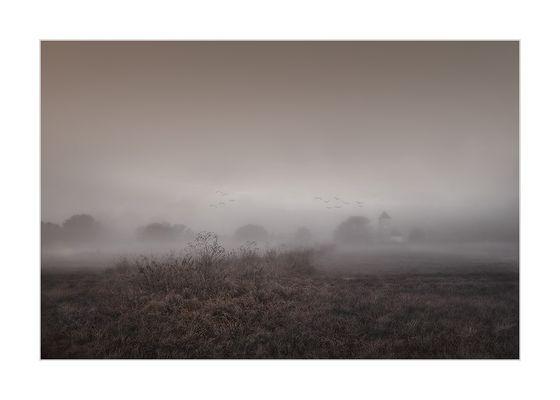 « seltsam, im nebel zu wandern ... »