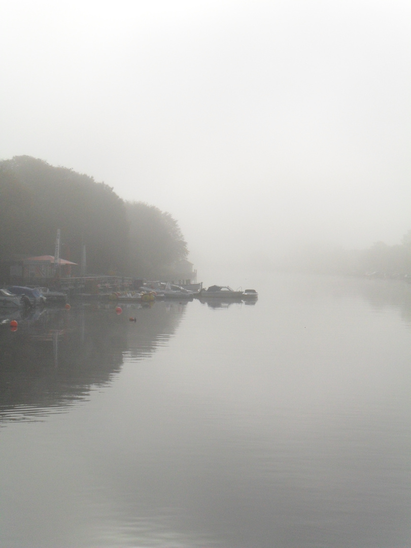 Seltsam im Nebel zu wandern.