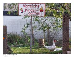 Seltsamer Kindergarten....