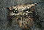 Seltsamer Vogel