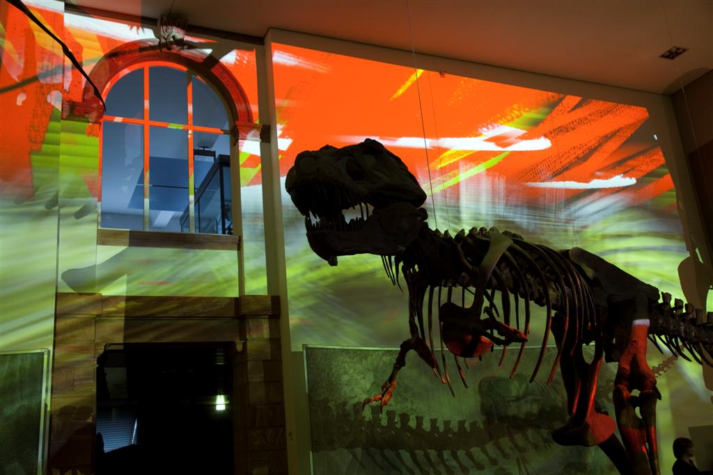 Senckenbergmuseum Frankfurt- Luminlae