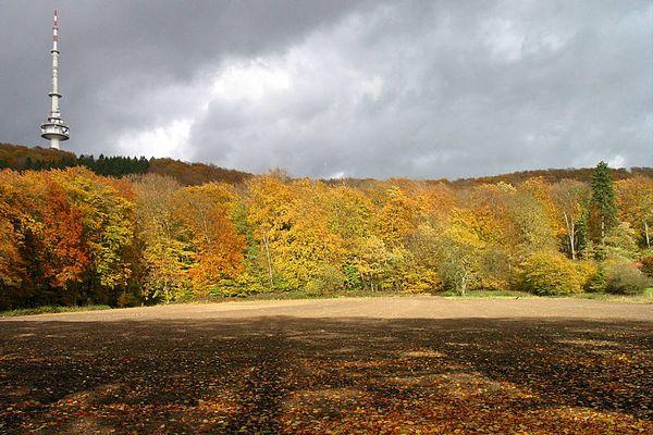 Sender Bielefeld / Hünenburg (Oktober)