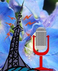 Sender RRBB Romantik-Radio Blaue Blume