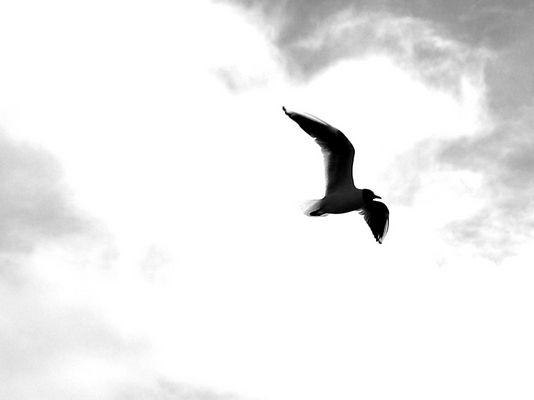 sensation de légereté dans les airs