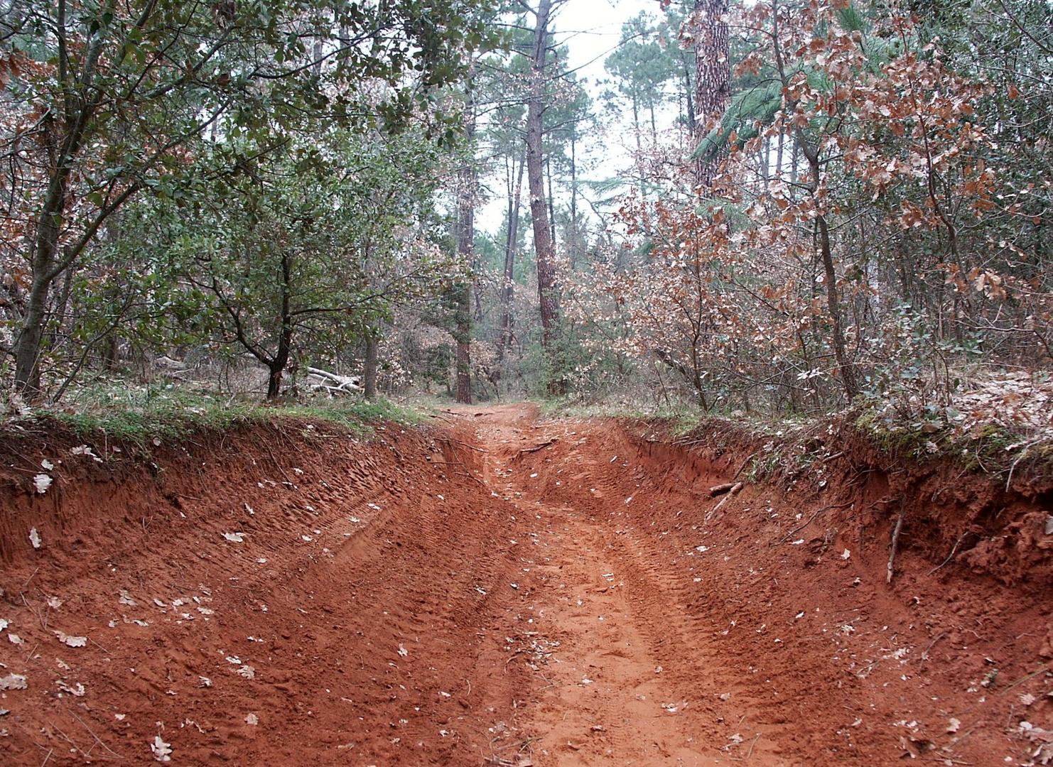 sentier 1